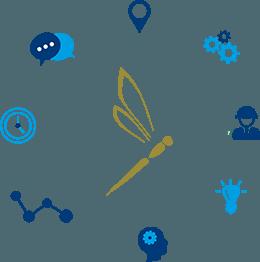 managementminded_training_cirkel_dragonfly